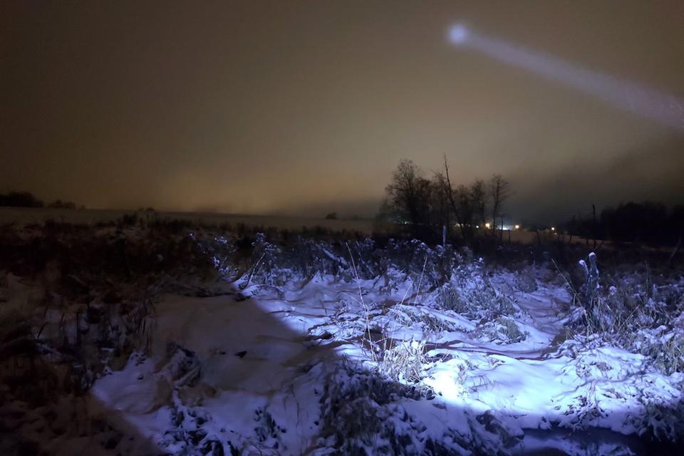 Затерянный в снегах, готовлюсь выбираться из плена: Одиннадцатый день карантина