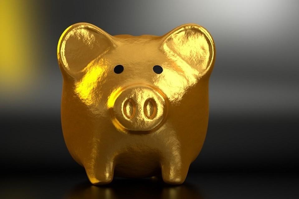 Нацбанк планирует, что к январю 2021 года Беларусь должна сохранить золотовалютный резерв. Фото: pixabay.com.