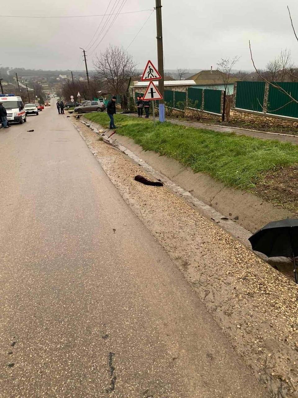 Смертельная авария произошла в центре села (Фото: полиция).