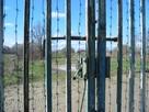 Янтарные порталы в железном занавесе: 30 лет назад в Калининград разрешили пускать иностранцев