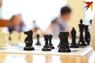 Библиотека шахматных достижений заработала в Удмуртии