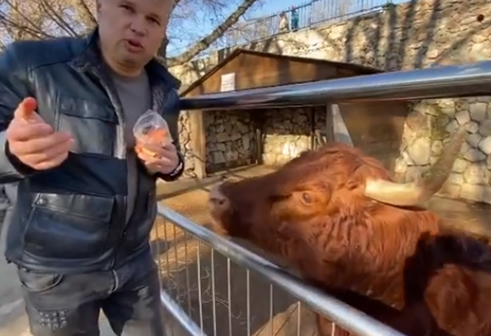 Фото: скриншот из видео Виктора Жиленко