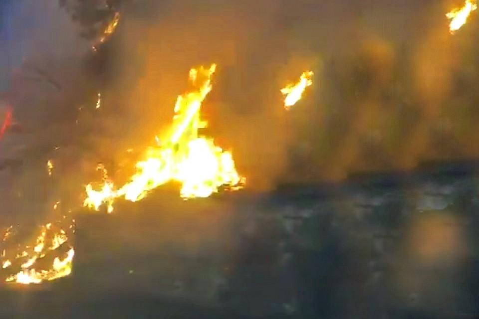 С огнем борются уже не первые сутки. Фото: кадр очевидца.