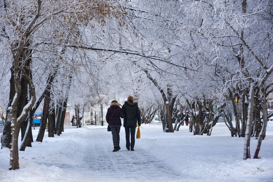 Сильные морозы уступят место потеплению и снегопадам