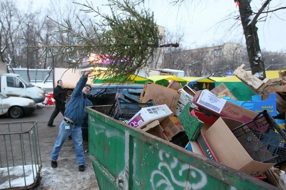 Психолог объяснила, когда нужно выбрасывать елку после Нового года