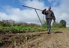 Крестьянам позволят законно жить на своей ферме. И даже там торговать