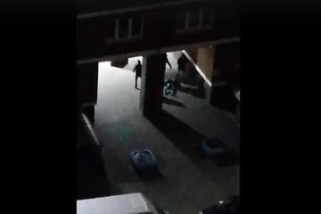 Брянская полиция о происшествии на «Речном»: заявление от потерпевшего не поступало