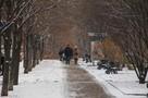 Сильный гололед в ДНР будет уже к концу недели