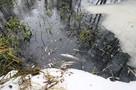 Липецкий водоканал заплатит более 43 млн рублей за отравление реки Усмань