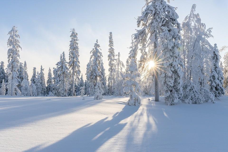 Ясно и температура ниже - 20°С