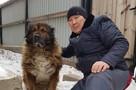 «Отказывался от еды, из глаз текли слезы»: сибирский Хатико едва не умер с тоски, пока хозяин лежал в ковидном госпитале