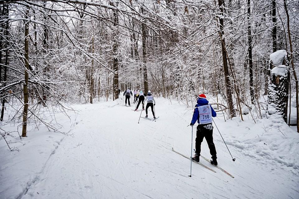 В Орловской области из-за снегопада перенесли «Лыжню России»