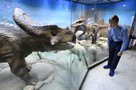 Бесплатный вход для учеников частных школ в музеи Москвы: дети смогут посетить более 100 учреждений