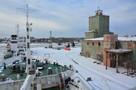 Жилые дома и бизнес-центры: что появится на месте рыбного порта в Калининграде