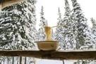 Похолодает до -41 градуса: синоптики рассказали, когда по Свердловской области ударят последние морозы