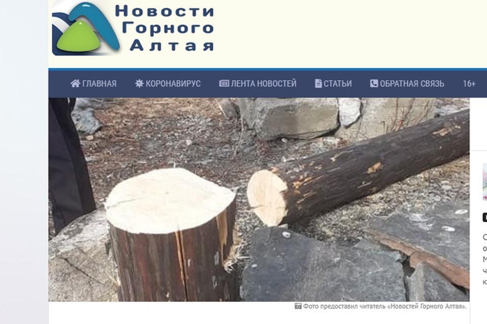 Спиленный столб (фото: скриншот сайта Новости Горного Алтая)