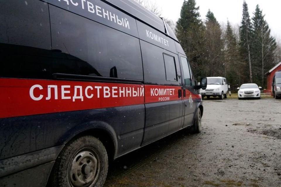 Следователи организовали проверку после избиения школьника на горке. Фото: архив КП