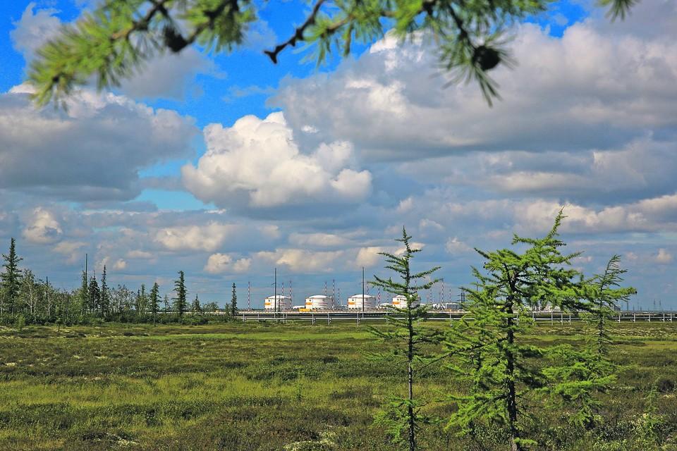 """Благодаря «зеленой» технологии и ветрогенерации углеродный след сократится до 25% показателей новых нефтяных проектов. Фото: пресс-служба """"Роснефти"""""""