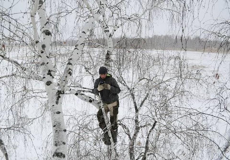 Блогеру удалось добиться установки вышки, которая обеспечит связью сразу три соседние деревни. Фото: instagram.com/omskiy.kolhoznik/
