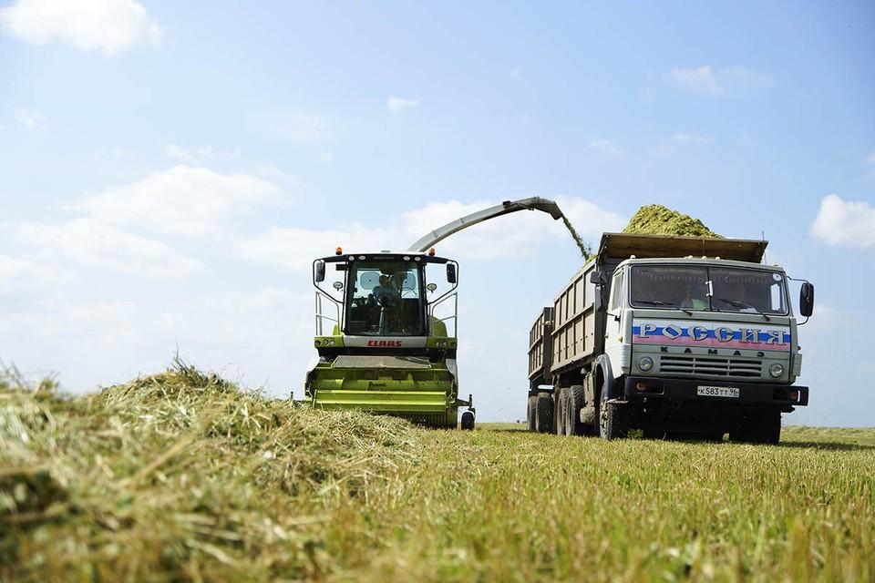 Экспортные пошлины на вывоз российского зерна за границу стали действовать в России с 15 февраля – сперва они составляли 25 евро за тонну пшеницы, а уже с 1 марта были повышены до 50 евро за тонну.