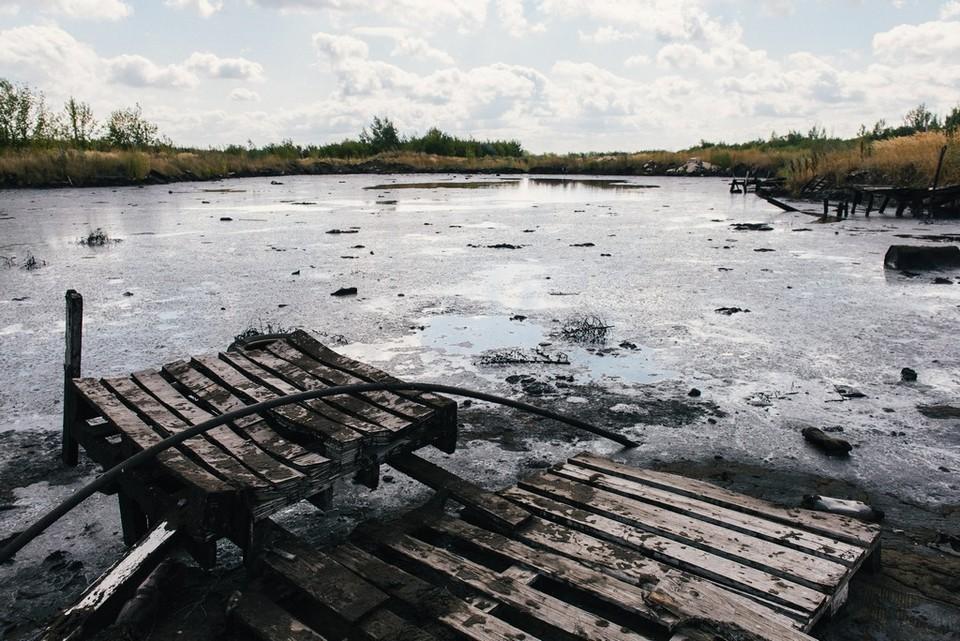 Самарская область на 41 месте из 85 по экологии в регионе