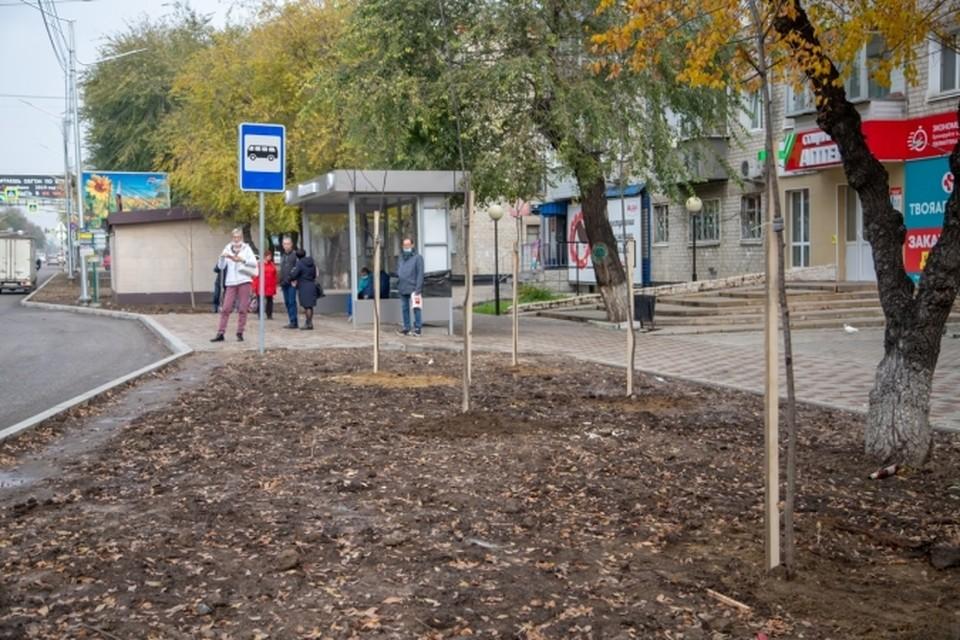 Фото: администрация города Благовещенска