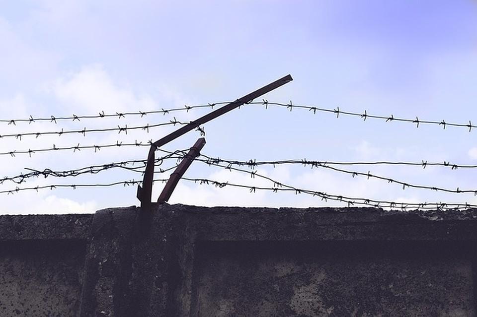 Жителя Красногвардейского района приговорили к 10 годам колонии. Фото: Pavlofox с сайта Pixabay