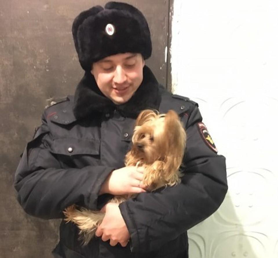 Такого малыша хозяйка бросила на погибель. Фото: ГУ МВД по Челябинской области