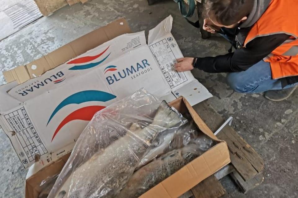 Семгу из Чили переупаковали, вывернув коробки на изнанку и указав страну-производителя КНР. Фото: пресс-служба Управления Россельхознадзора по Приморскому краю и Сахалинской области