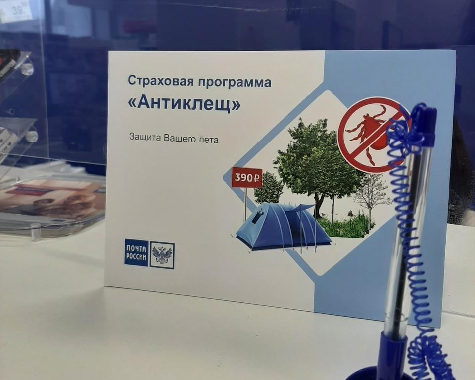В Хабаровском крае страховой полис «Антиклещ» доступен в отделениях Почты России