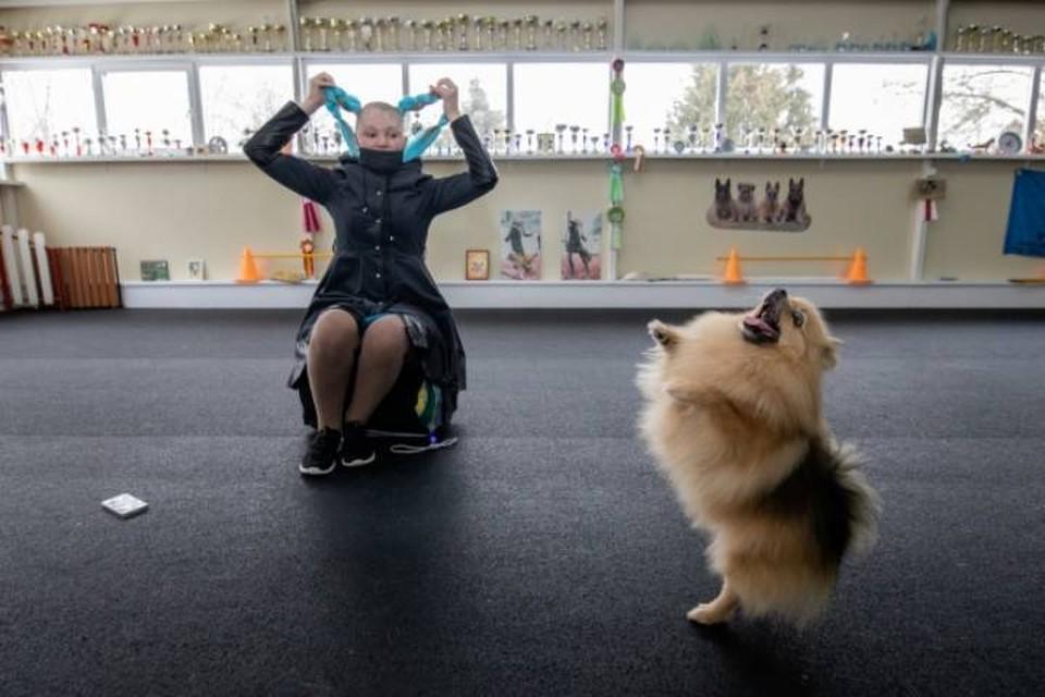 Кировчанку, желающую купить щенка шпица, лжезаводчик обманул на 13 тысяч рублей.