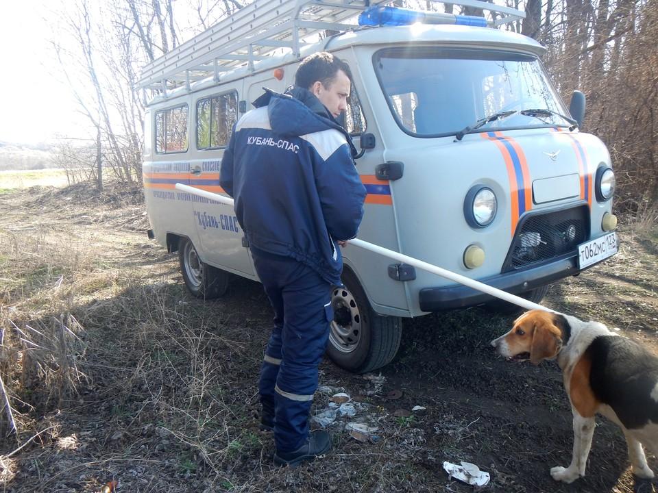 Собаку ввели с рынка и передали хозяину. Фото: Кубань-СПАС