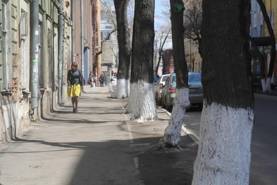 Погода в Иркутске: 6 апреля в городе переменная облачность