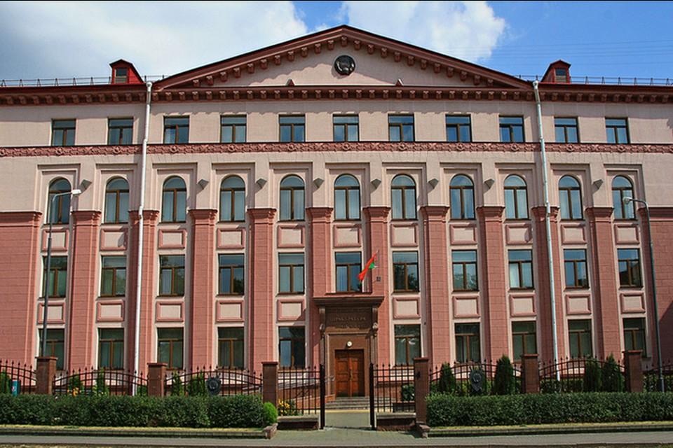 Гражданку Литвы могут выслать из Беларуси за участие в акции протеста. Фото: прокуратура Минска