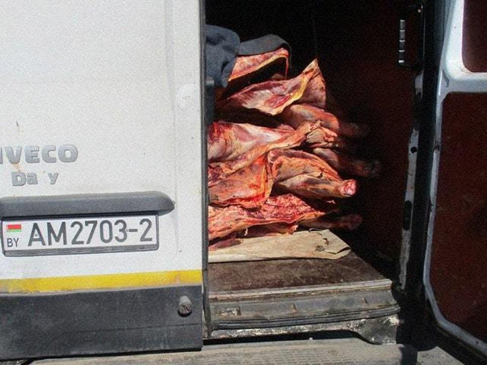 В Смоленской области уничтожили около 4 тонн говядины из Белоруссии. Фото: Управление Россельхознадзора по Брянской, Смоленской и Калужской областям.