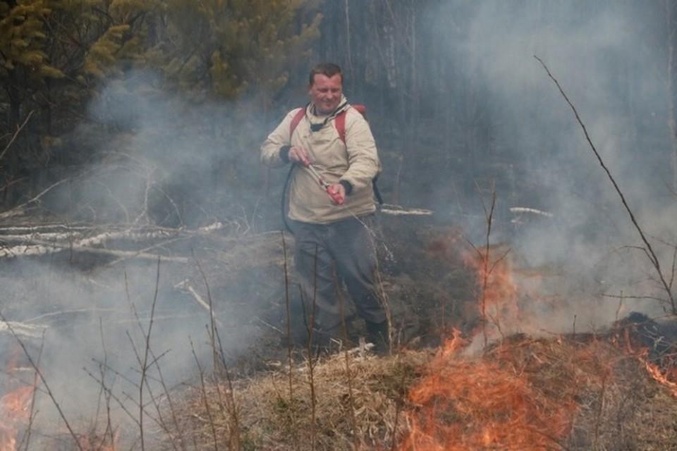 С 9 апреля в Алтайском крае начинается пожароопасный сезон.