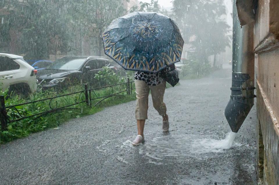 Осадки в виде дождя могут осложнить дорожную ситуацию.