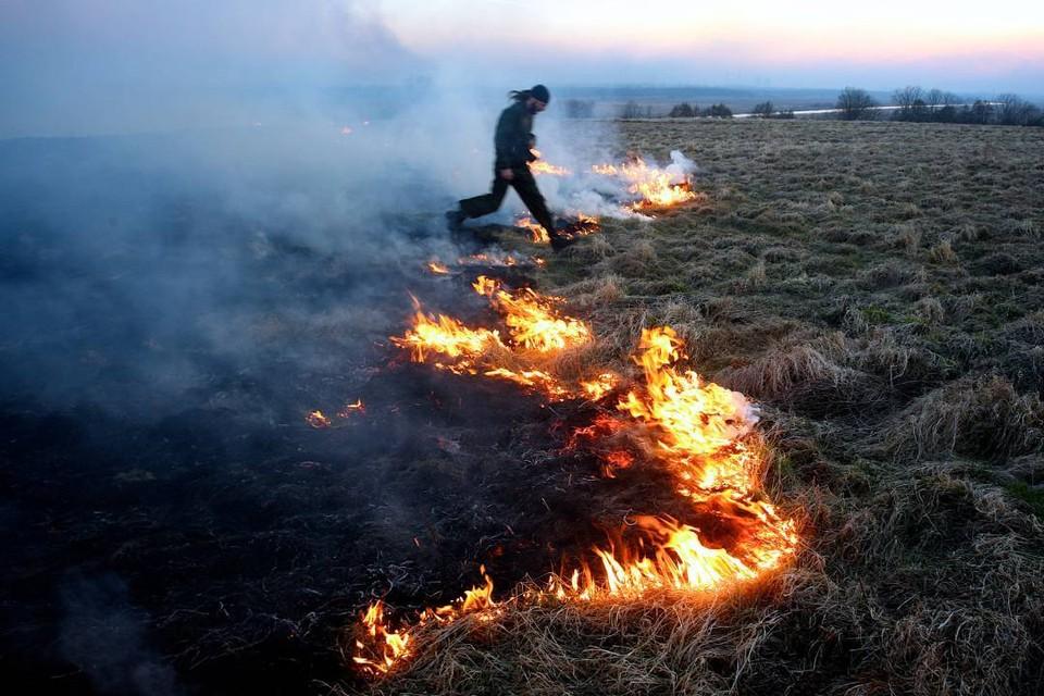 Сжигание сухой травы может привести к трагическим последствиям, особенно в ветреную погоду.