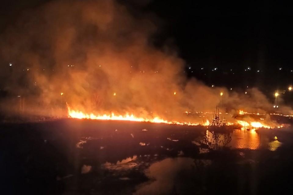 Очередной пожар произошел в Нижнем Новгороде у Пермяковского озера. Фото: Александр КУЗНЕЦОВ/vk.com