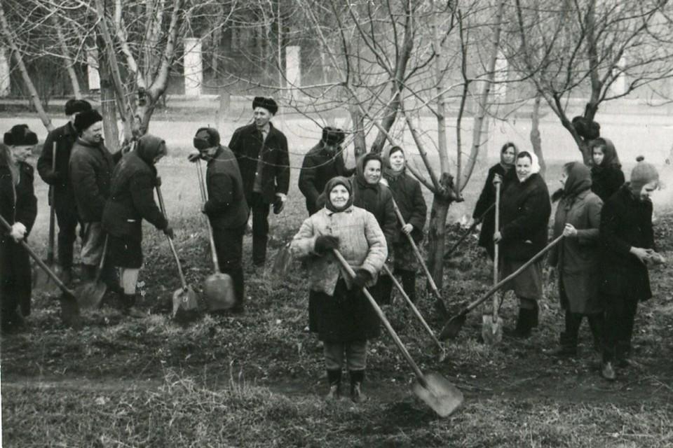 Вместе и работа не в тягость. Фото: Форум «Новосибирск в фотозагадках».
