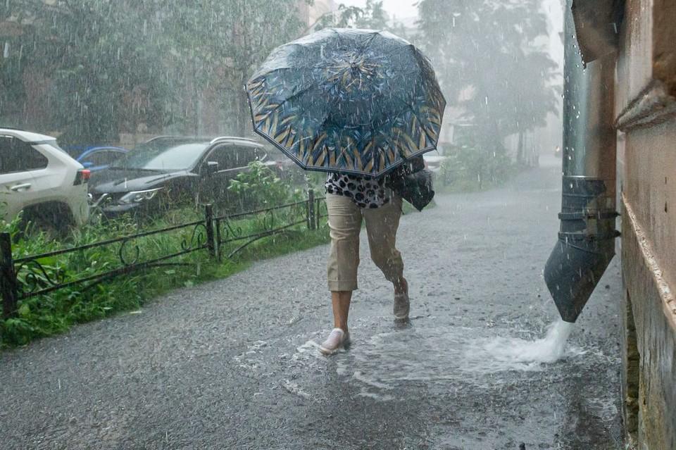 2 мая в течение дня будет идти дождь.