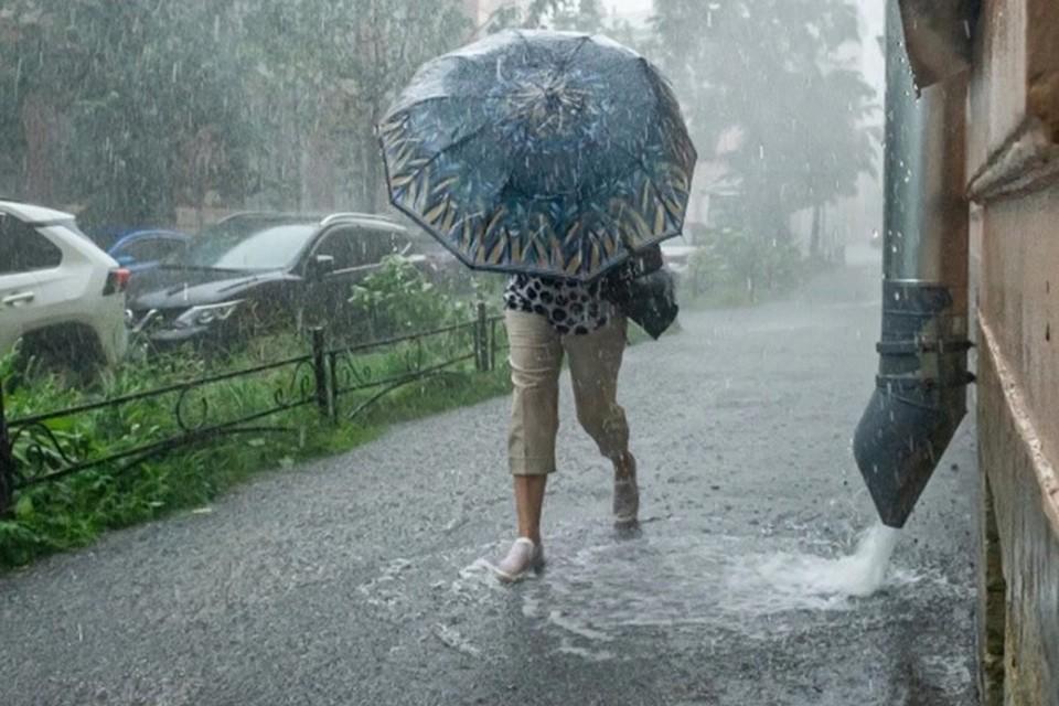 Погода в Нижнем Новгороде в мае 2021: Тепло и дождливо.