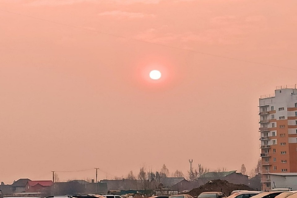 """Солнце над Новосибирском окрасилось в кровавый цвет из-за смога. Фото: """"АСТ-54""""."""