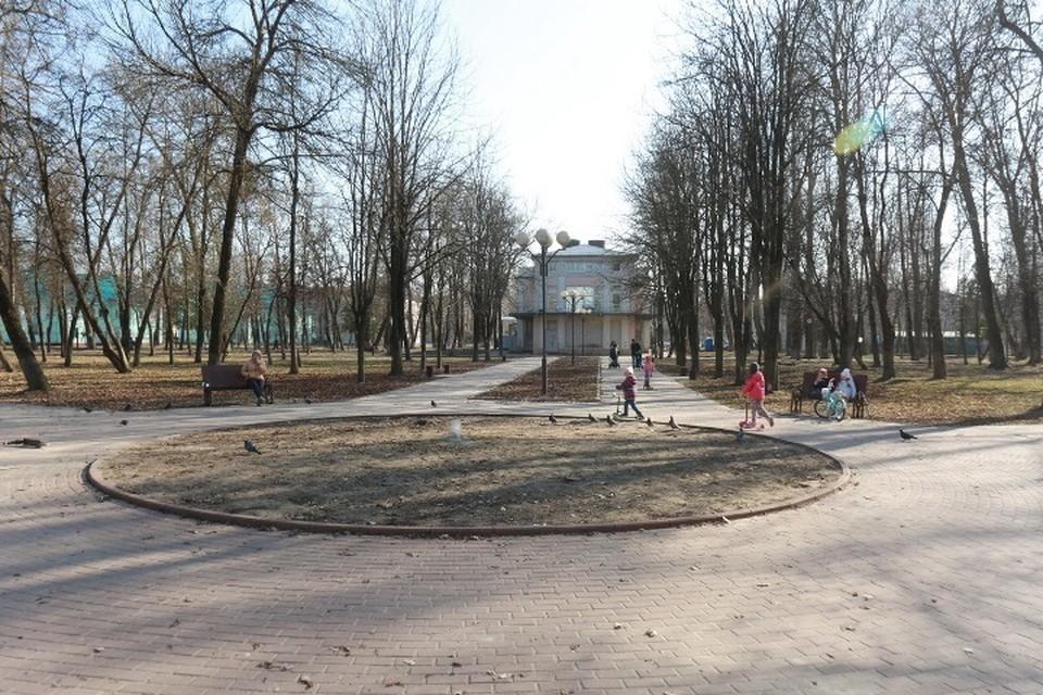 Брянцы могут проголосовать за благоустройство бежицкого парка Металлургов.