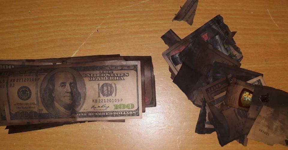 Часть украденных долларов сгорела в печке. Фото: politia.md
