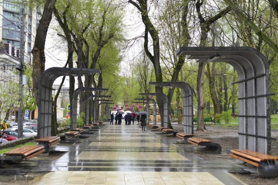 Новая аллея в парке Кафедрального собора.