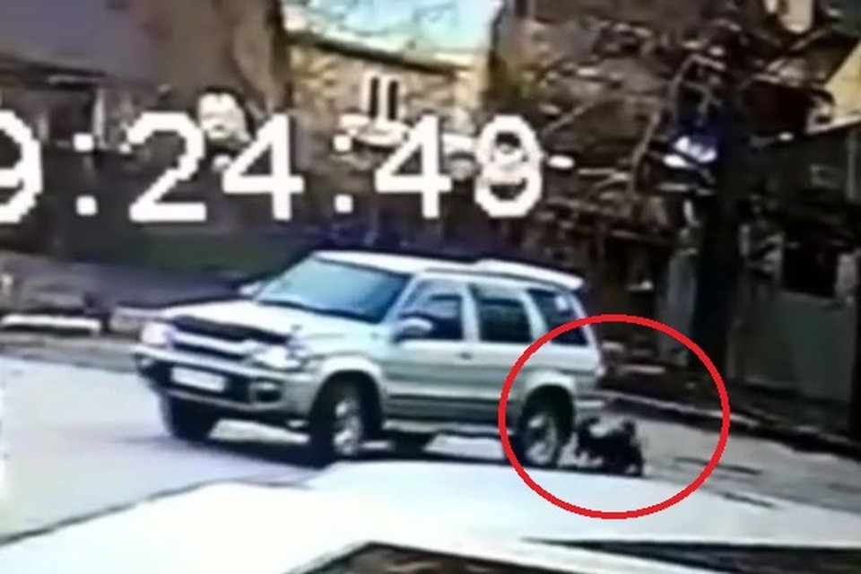В Первомайском районе Новосибирска девочка едва не угодила под колеса иномарки. Фото: Кадр из видео