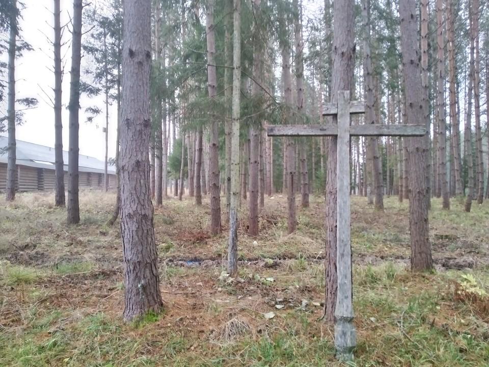 Здесь, в лесах у деревни Дудкино комбат Иванов принял свой последний бой.