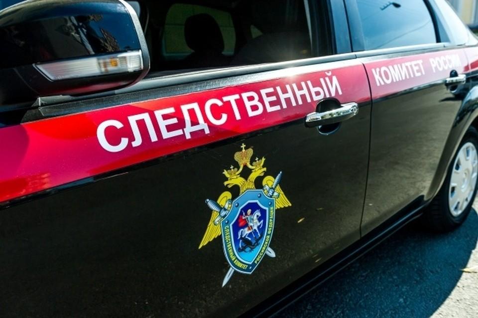 Уголовное дело возбуждено по материалам, предоставленным УФСБ России по Новосибирской области.