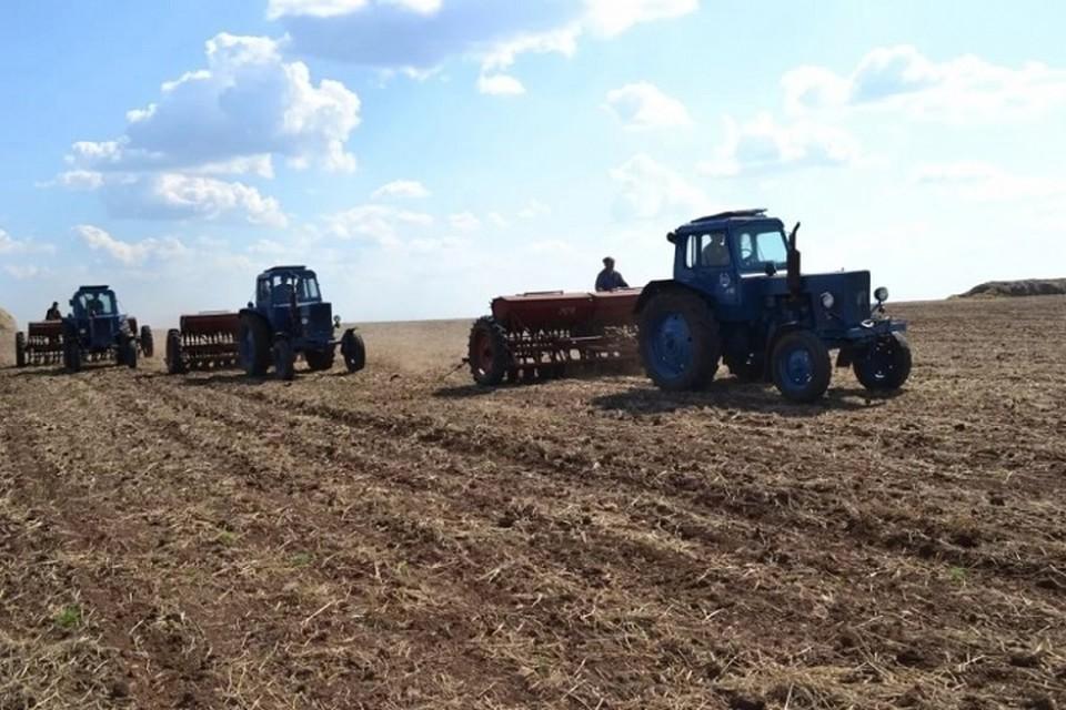 Аграрии Хабаровского края отметят майские праздники ударным трудом в поле